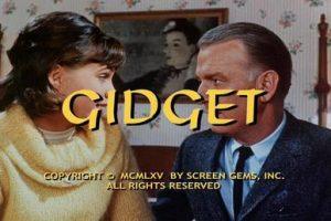 Gidget TV Show