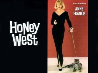 Honey West TV Show