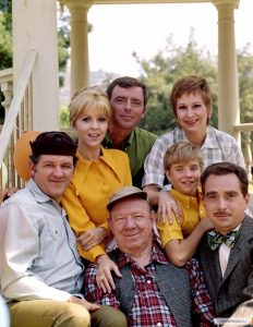 Mayberry, R.F.D. TV Show