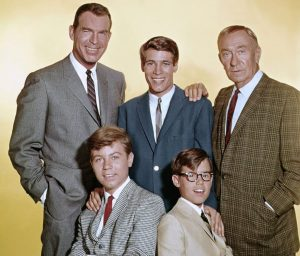 My Three Sons TV Show